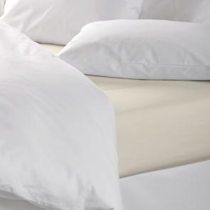 Hotel Pure Luxury Cream Coloured 144 TC Flat Sheet